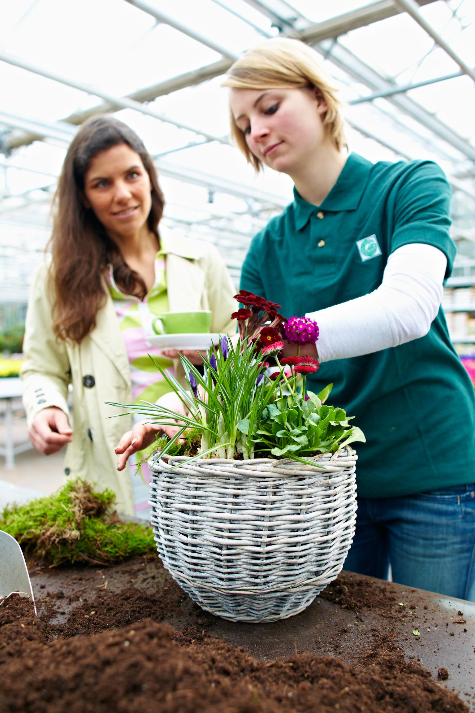 Gärtner/in im Zierpflanzenbau